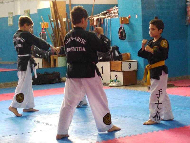 practica de taikachisu